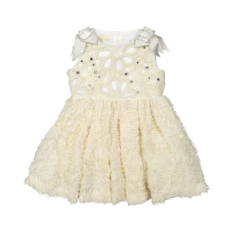 Girls Organza Dress With Pearls