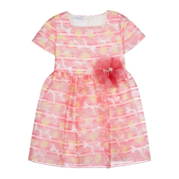 Girls Floral Striped Organdy Dress with Flower Application