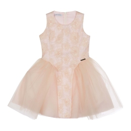 Girls Embroidered Dress with Tulle Skirt